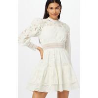 AllSaints Sukienka koszulowa 'Annasia' ALS0202001000002