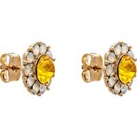 LILY AND ROSE Kolczyki 'Miss Sofia earrings - Sunshine' LAR0043001000001